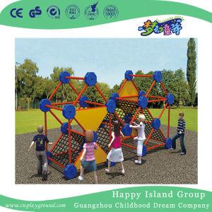 Apparatuur die van de Speelplaats van kinderen de OpenluchtApparatuur HF-18903 beklimmen
