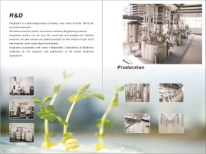 Les acides chlorogénique 5%~98 % par les rayons UV Extrait de fleur de chèvrefeuille