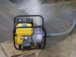 농업 Water Pump Wp 30b (3개의  /3 인치)