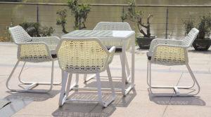 Mobiliário de estilo americano/Mobiliário de exterior/móveis de vime (MYX12-021)