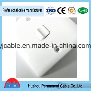 13A África do Sul PC eléctrico do interruptor de parede (1G1W)
