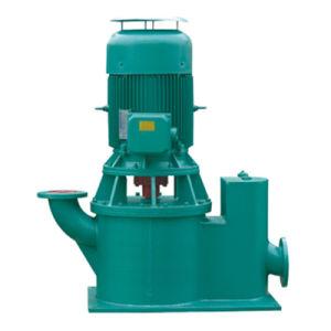 Pompa autoadescante di Non-Leakage verticale (WLZ)