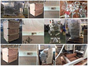 Maquinas Envasadoras de Te /Cama Cámara Única Bolsa de Té de la Máquina de Embalaje Sellado con Calor Bolsa Exterior (Modelo DXDC8IV) //