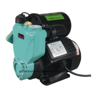 Motor eléctrico de periféricos de Jardín Autoself cebado de bomba de circulación de agua a presión