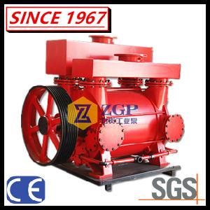 De de vloeibare Vacuümpomp en Compressor van de Ring van het Water voor de Was van de Steenkool