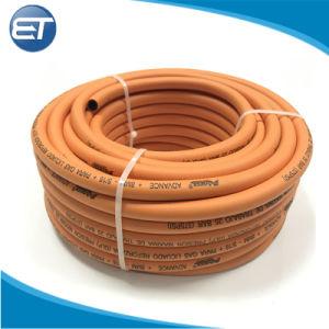 Flexível de alta pressão da mangueira do tubo de gás de Gás Natural
