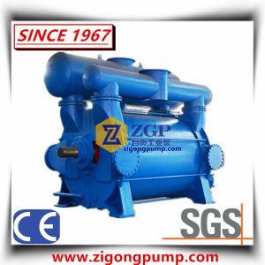 Vacuümpomp Van uitstekende kwaliteit van de Ring van het Water van de Elektrische Motor van China de Vloeibare
