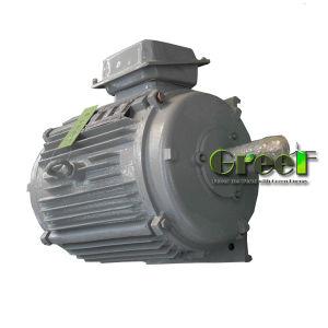 Pmg Brushless Direct-Drive 2MW250tr/min