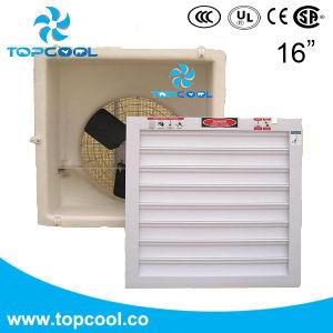 Компактный Axial Flow боковой стенке вентилятора вытяжной вентилятор Gfrp 16 парниковых оборудования