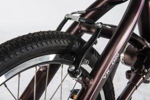 シャフトドライブが付いている折る自転車か鎖のない折る自転車/Foldable自転車