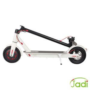電気ULの証明書都市ココヤシの電気モペットのスクーター