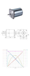 5-300W CEPILLADO PMDC carbono eléctrico Motor de secador de pelo /batidora
