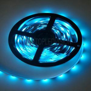 La luz de la Cinta de LED RGB LED/60m con TUV CE