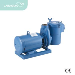중국 제조자 수영풀 구리 펌프 (ATB 시리즈)
