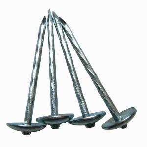 Elettrotipia capa dell'ombrello galvanizzata coprendo chiodo