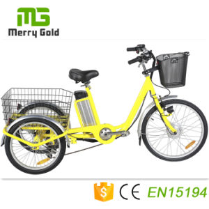 Cesta de la parte trasera de 3 ruedas bicicleta eléctrica 36V 250W triciclo Motor Eléctrico