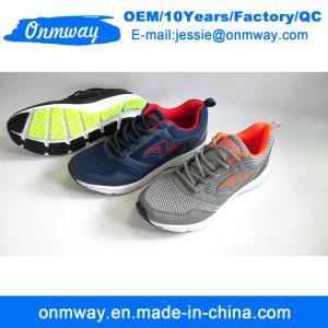L'homme coloré de sports de plein air des chaussures de course