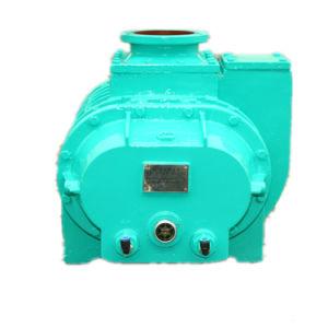 비누 만들기를 위한 고품질 Zj-600 루트 진공 펌프