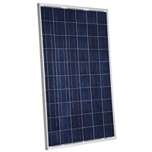 Bld240W-60poly panneau solaire