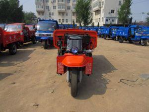 Voertuig Met drie wielen van het Merk van China het Beroemde met Dieselmotor (WK3B0019101)