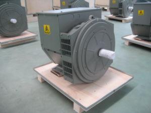 11 kVA Trifásico alternador sin escobillas (JDG164B)