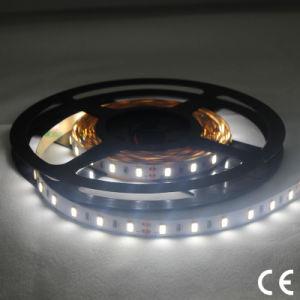 Indicatore luminoso di nastro di Samsung SMD5630 LED di alta luminosità