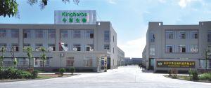 "Camptothecine Kingherbs"" 96%, 98%, 99% por HPLC"