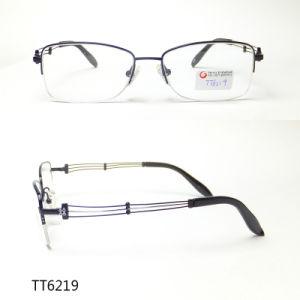 Het populaire Frame van het Titanium van Mensen Modieuze Optische (TT 6219)