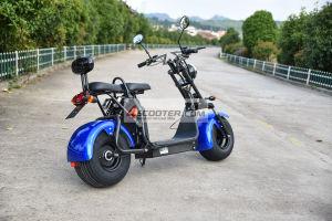 EEC公認1500W 60V電気Harleyのスクーター都市ココヤシ