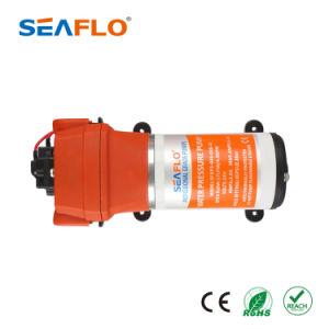 Pompa ad acqua portatile di Seaflo 24V 4.5gpm 40psi