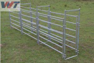 Comitato galvanizzato portatile del recinto per il bestiame/Corral delle pecore del cavallo dell'animale domestico del comitato della rete fissa del bestiame di migliore alta qualità di vendita