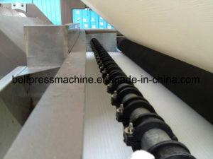 Máquina de desidratação de lamas/ 500-3500mm largura da correia do cinto de segurança do filtro de tipo pressione