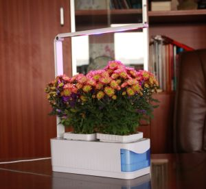 Las plantas de escritorio de 360 grados de ajuste flexible de crecer en todo el espectro de luz LED