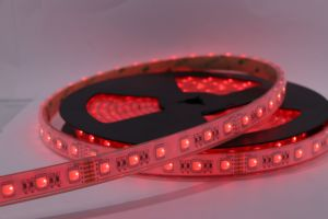 Indicatore luminoso economico e certo 12V 24V LED dell'indicatore luminoso flessibile multifunzionale impermeabile del nastro LED dell'indicatore luminoso di IP68 SMD5050 RGB della striscia esterna 5050 60 di LEDs/M RGBW di striscia