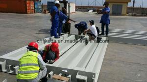 Norme Electroinc bascule/camion échelle 30tonne à 150 tonne