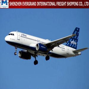 マイアミ米国への中国の航空貨物