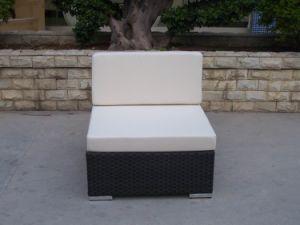 Сад патио плетеной / плетеной диван - садовой мебелью (GS155-M)