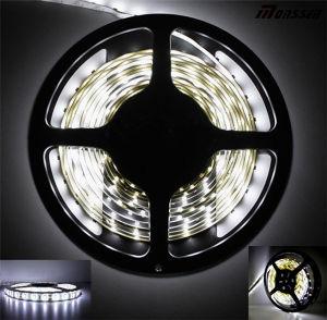 Cinta del blanco 5050 los 60LED/M LED de DC12V Nonwaterproof