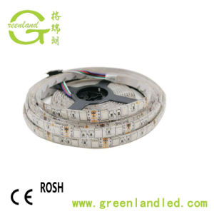 Striscia flessibile eccellente di luminosità 60LEDs/M LED di alto potere IP68 SMD5050 24/12V