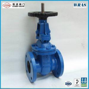 ANSI 125psi/150psi 연성이 있는 철 게이트 밸브