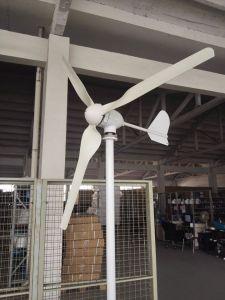 De de de Chinese 1kw Horizontale Molen van de Wind van de As Naier/Turbine van de Wind/Generator van de Wind