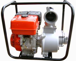 Wasser-Pumpe ((173F) QGZ100-30)