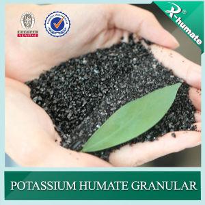 Het Glanzend Kristal van Humate van het kalium/Poeder/Korrelig, Hoog Humusachtig Zuur