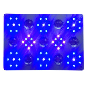 1500W WiFi de alta potência LED da intensidade de luz crescer