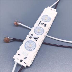 Modulo della Cina 110V LED nessun driver di bisogno LED