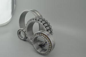 Tirée de haute qualité La cuvette de roulement à aiguilles avec la série N