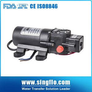 Singflo Flo-2203 12V DC Agricultural Power Sprayer Pump 또는 Small Electric Water Pump/Micro Diaphragm Pump
