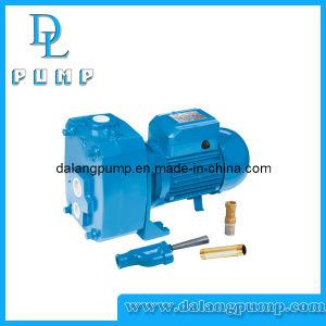 Dp505 깊은 우물 Self-Priming 제트기 펌프