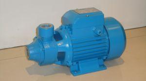 電気きれいなポンプ(QB70、QB80)