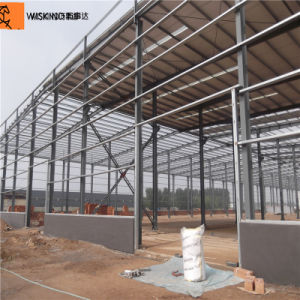 La estructura de bastidor de acero de construcción (WSDSS111)